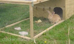 CHICKENMALLAS poultry netting works on rabbits